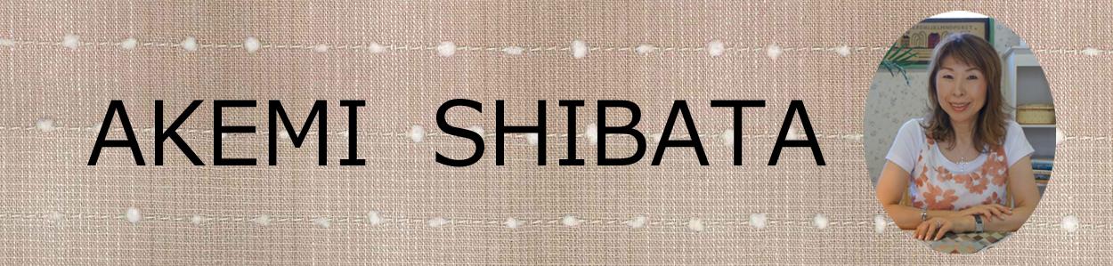 AKEMI SHIBATA:キルトデザイナー柴田明美のオリジナル商品やセレクト布、関連商品の販売