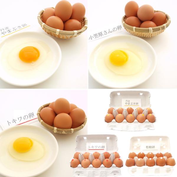 卵3種バラエティセット トキワ養鶏 小笠原農場 カンナンファーム  1セット
