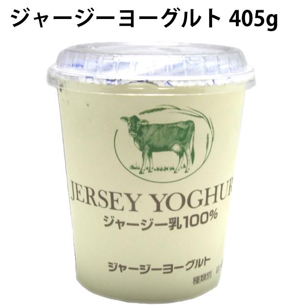 国産 無添加 メイルオーダー 乳製品 ジャージー乳 低温殺菌 405g ジャージーヨーグルト 送料込 タカハシ乳業 予約販売 12パック