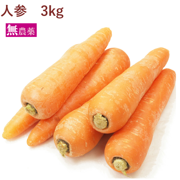 保証 国産 ニンジン にんじん 野菜 卓出 人参 送料込 3kg 無農薬栽培