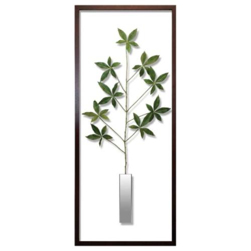 保証 送料無料 Pachira glabra 新着セール リーフアートフレーム F-style Frame パキラ グラブラ 取寄品 美工社 42.5×101.5×3cm 造花 額付きインテリア 42.5x101.5x3cm 42