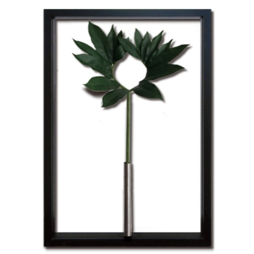 Urashima sou リーフアートフレーム F-style Tuinie ウラシマソウ 美工社 ITN-52649 造花 額付きインテリア 取寄品