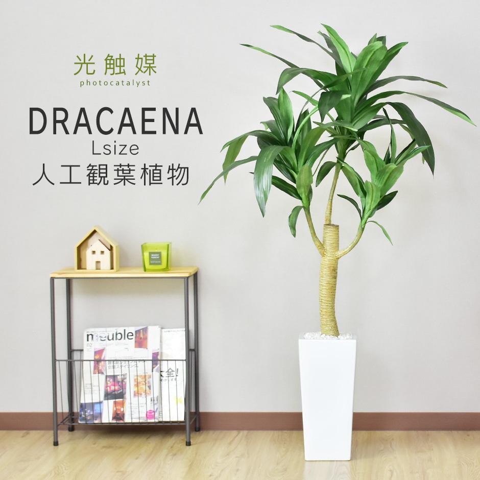 室内 おしゃれ 人工観葉植物 直輸入品激安 造花 光触媒 2020 水やり不要 送料無料 ドラセナL 新生活応援 観葉植物 インテリアグリーン ドラセナ