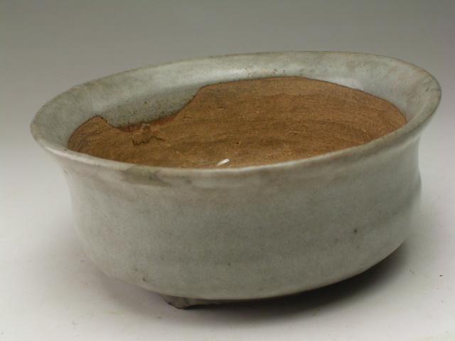 和鉢 白釉丸盆栽鉢【送料無料】