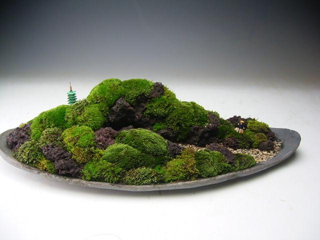 苔の遠山 盆景
