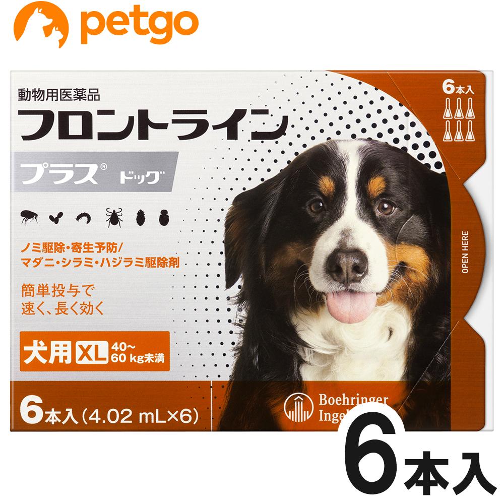 犬用フロントラインプラスドッグXL 40kg~60kg 6本(6ピペット)(動物用医薬品)【あす楽】