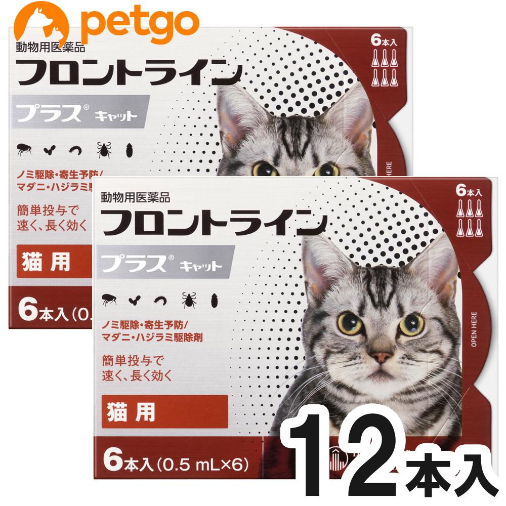店内全品送料無料 2箱セット 猫用フロントラインプラスキャット 安心の実績 高価 買取 強化中 6本 市販 6ピペット 動物用医薬品 あす楽