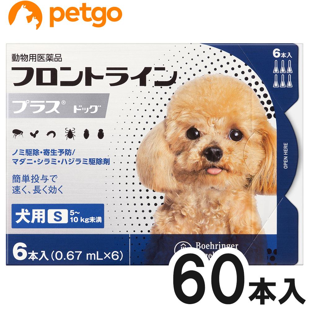 【エントリーでP3倍】【10箱セット】犬用フロントラインプラスドッグS 5~10kg 6本(6ピペット)(動物用医薬品)【あす楽】