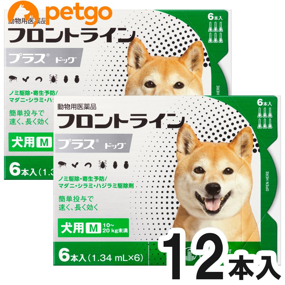 【2箱セット】犬用フロントラインプラスドッグM 10kg~20kg 6本(6ピペット)(動物用医薬品)【あす楽】