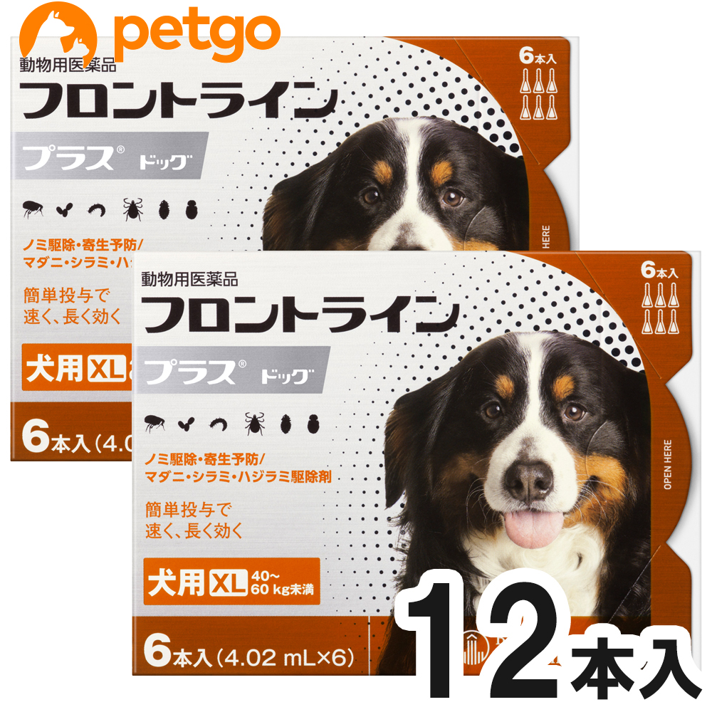 【200円OFFクーポン】【2箱セット】犬用フロントラインプラスドッグXL 40kg~60kg 6本(6ピペット)(動物用医薬品)【あす楽】