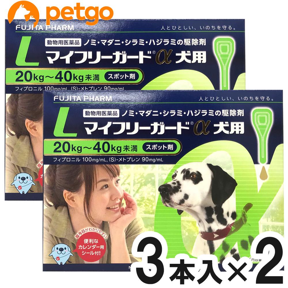 【2箱セット】マイフリーガードα 犬用 L 20~40kg 3本(動物用医薬品)【あす楽】