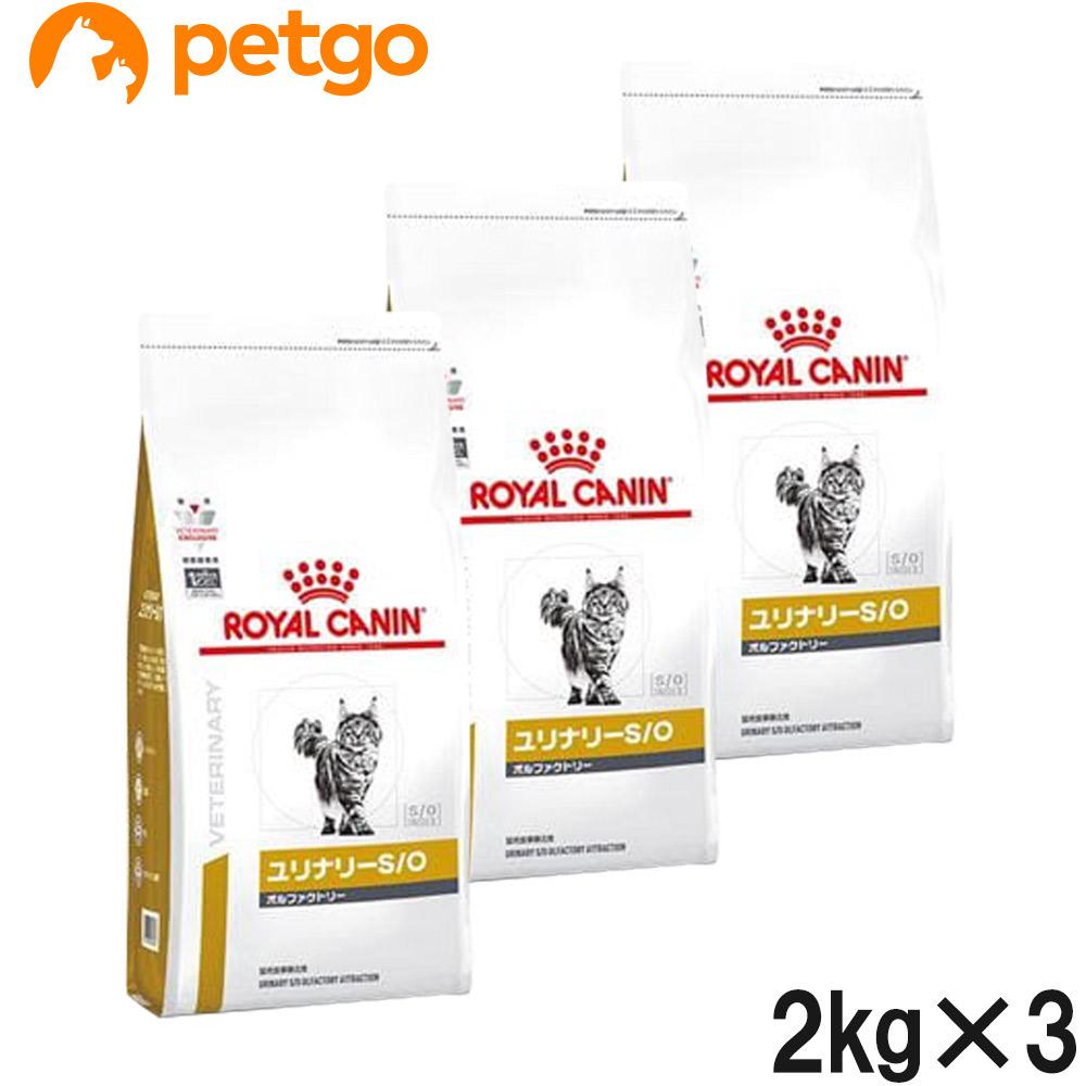 【3袋セット】ロイヤルカナン 食事療法食 猫用 ユリナリーS/O オルファクトリー ドライ 2kg (旧 pHコントロール2 フィッシュテイスト)【あす楽】