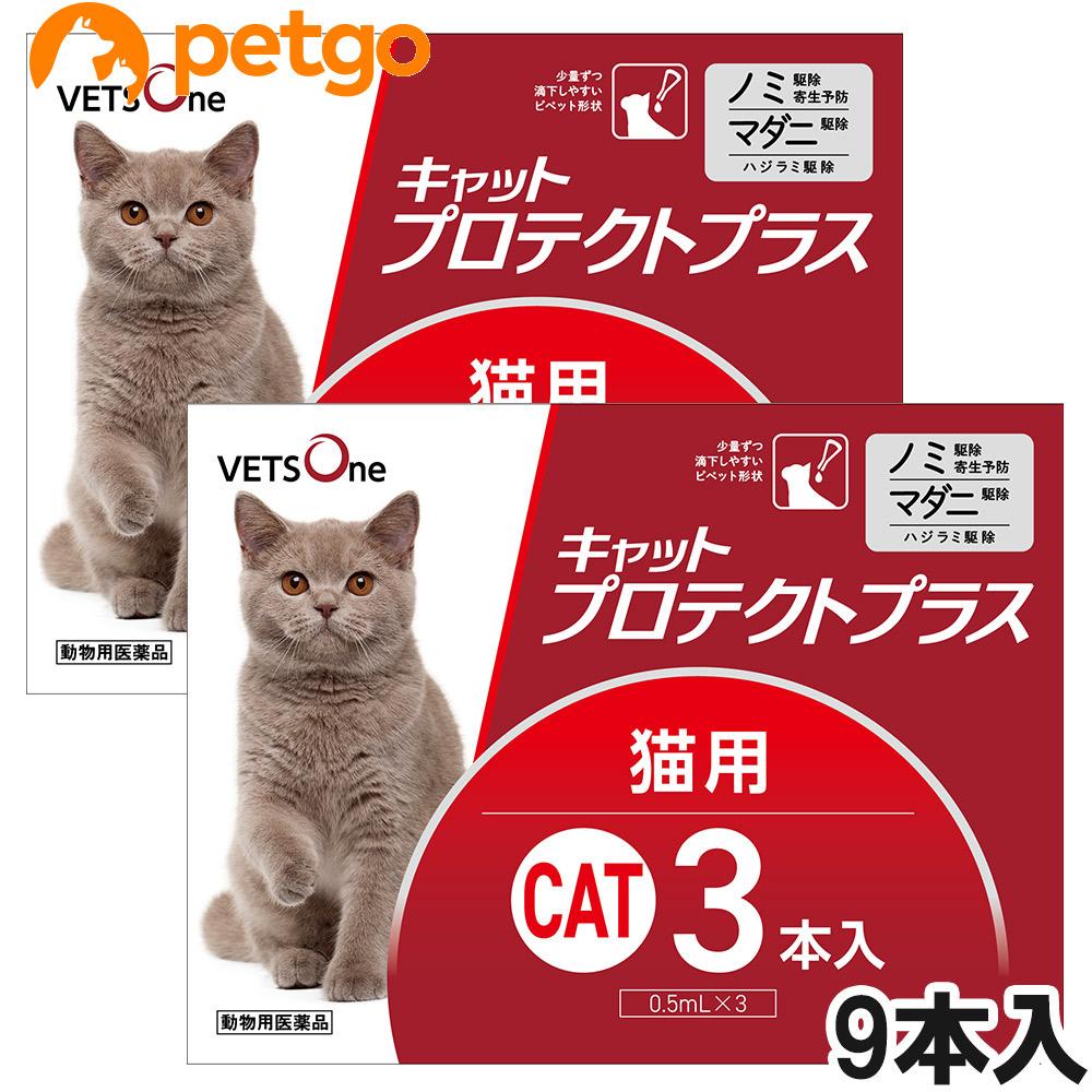 フロントラインプラスのジェネリック医薬品です ベッツワン キャットプロテクトプラス 猫用 9本 完売 動物用医薬品 あす楽 海外限定