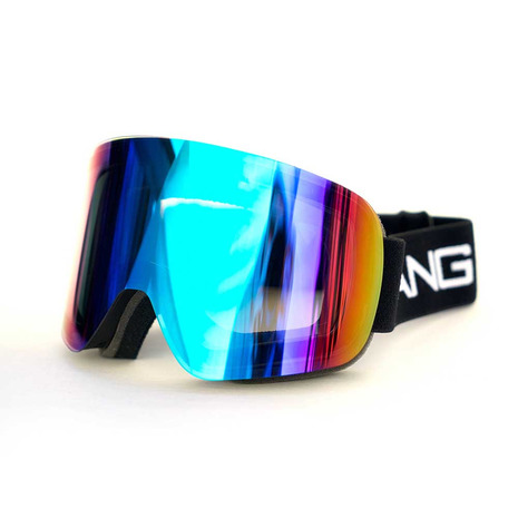 DANG SHADES TWENTY 20 BLK/GRN vidgg0011 ゴーグル スキー スノーボード (Men's)
