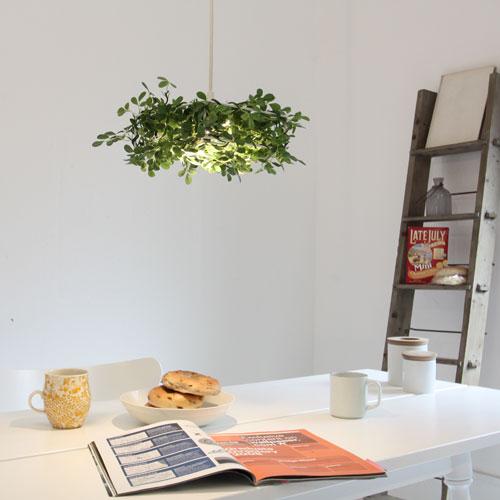 【送料無料】LED Alloro pendant lamp【TC】【DIC】【取寄品】 新生活