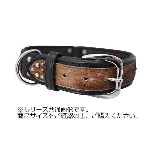 Angel Sedona Collar 犬用首輪 Black 11095