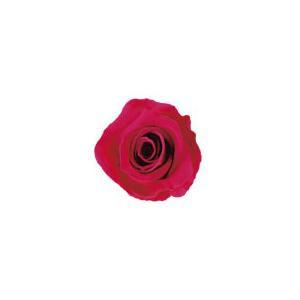 【セール】 verdissimo ヴェルディッシモ バルク ミニローズ ドルチェピンク 58927:生活雑貨のお店!Vie-UP-花・観葉植物