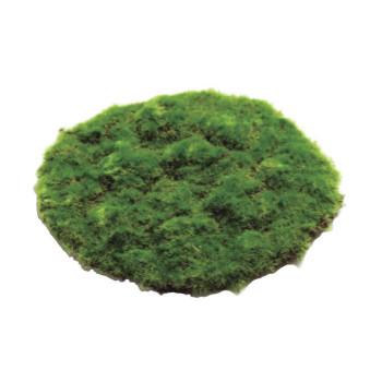 観葉物 モスマット(大) グリーン 12枚セット R1081 アレンジメント送料込!【代引・同梱・ラッピング不可】