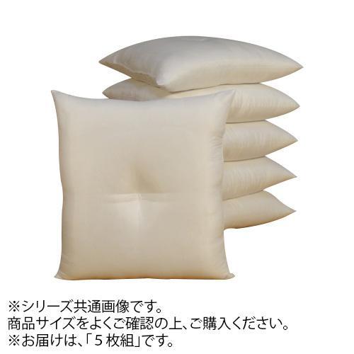 ヌード座布団 59×63cm 5枚組【代引・同梱・ラッピング不可】