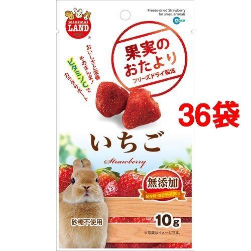【送料込!】果実のおたより いちご 10g*36コセット 【※送料込の価格です。】
