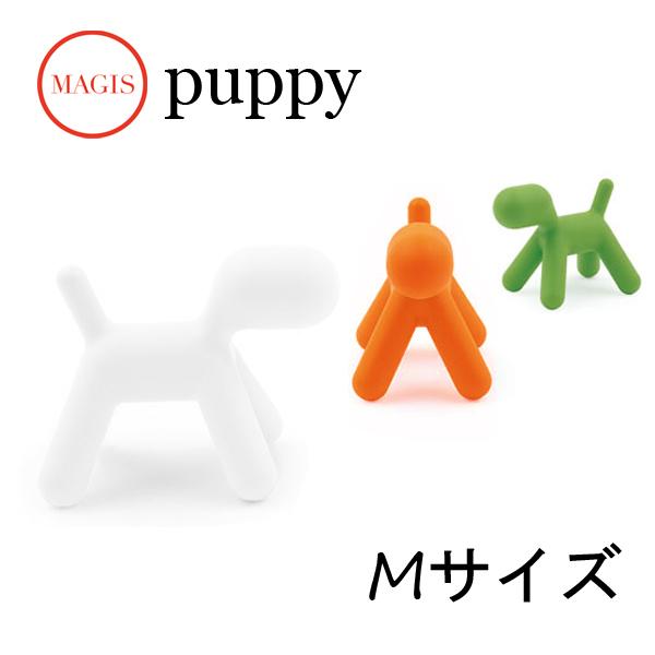 パピー Puppy M