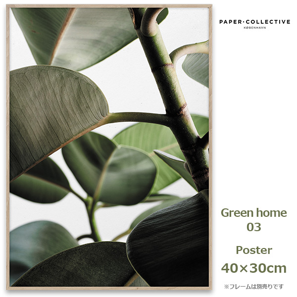 Green home 03