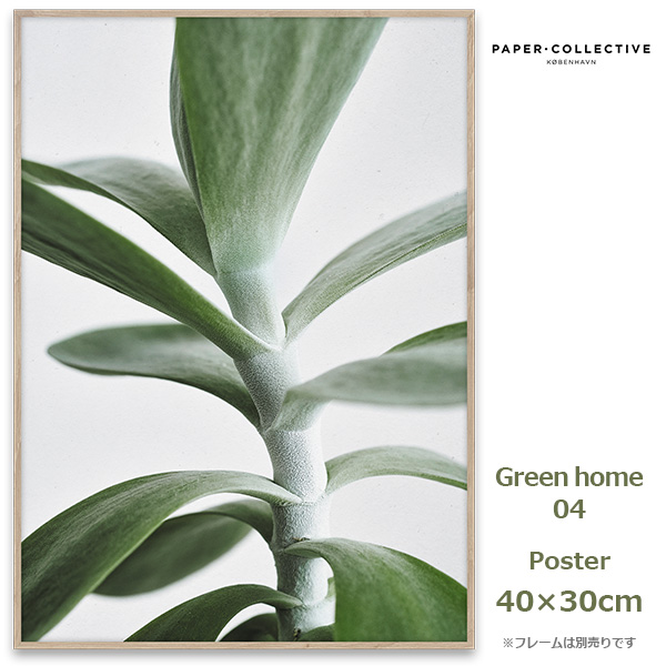 Green home 04