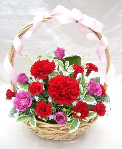 モーブピンクのバラと真っ赤なカーネのグラデーション情熱カラーのバスケットアレンジ プリザーブドフラワー [PW]
