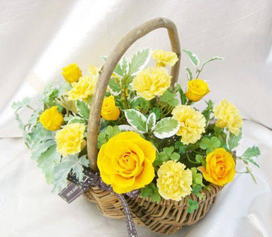 黄色のバラと黄色カーネのグラデーション西に飾って金運UPのバスケットアレンジ プリザーブドフラワー [PW]