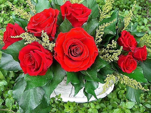 赤バラの寄せ植え風FRESH プリザーブドフラワー[PW]