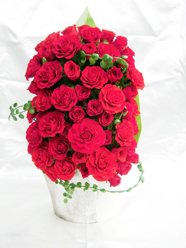 60本の赤いバラ RED ROSE/プリザーブドフラワー