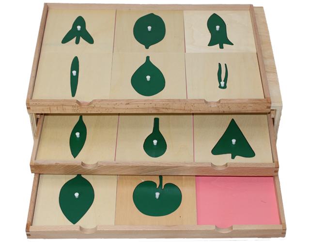 モンテッソーリ 葉のたんす ♪5段 格安版♪ Montessori Botany Cabinet 知育玩具