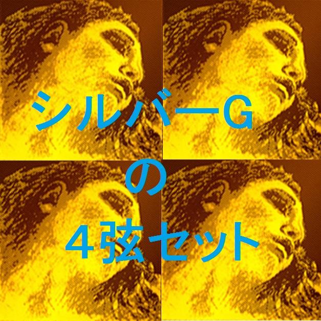 バイオリン弦 新Evah Pirazzi シルバーG ボール・エンド 4弦セット(E A D G)