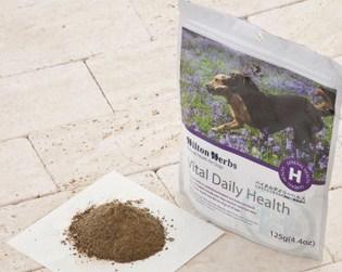 Hilton Herbs 犬用 サプリメント ヒルトンハーブ バイタルデイリーヘルス(Vital Daily Health) 粉末タイプ [250g] 小型犬用/中型犬用/大型犬用 子犬用/成犬用/高齢犬(シニア犬)用 天然成分100% 無添加 送料無料 dog visions