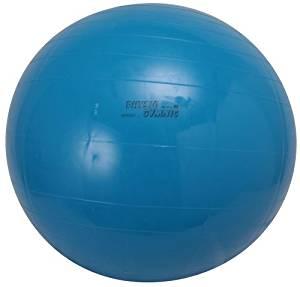ダンノ(DANNO) ギムニクカラーボール 95cm D5435 【店頭受取対応商品】