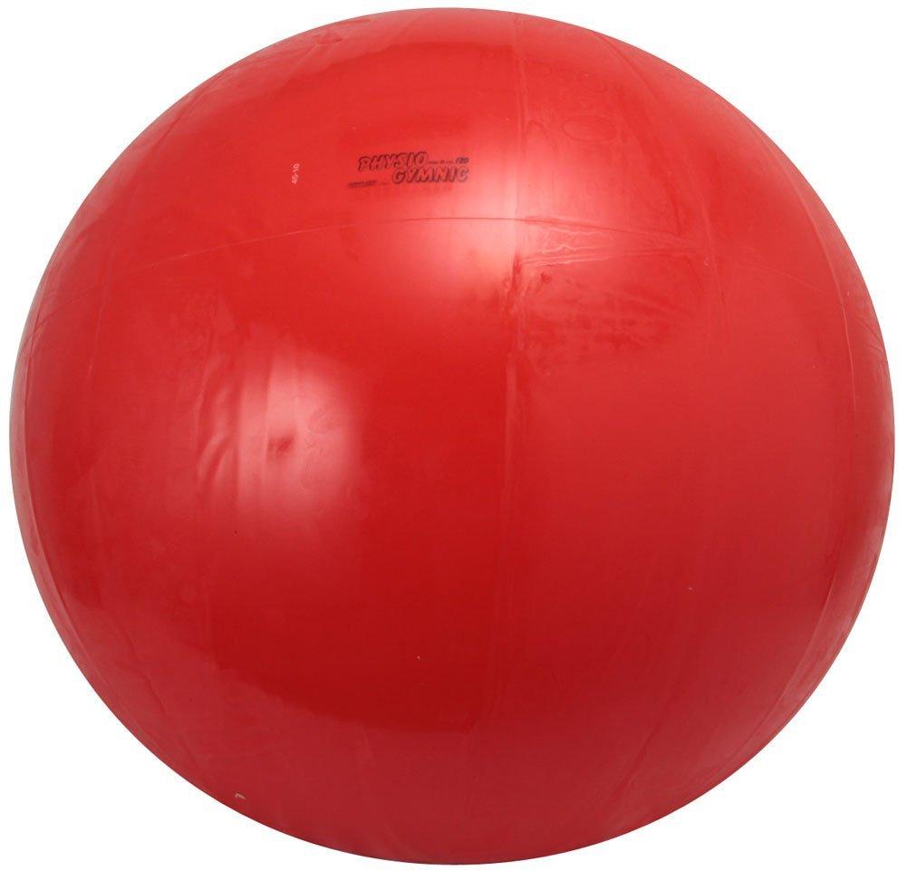 ダンノ(DANNO) ギムニクカラーボール 120cm D5438