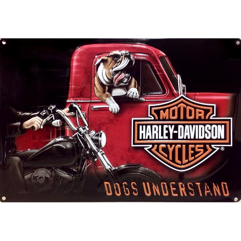 marketing of harley davidson essay _ harley davidson (marketing strategy) _____ current situation a environment (macro/external) 1economic harley-davidson has been able to get pretty good.