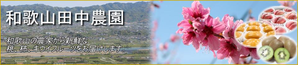 和歌山田中農園:旬の果物、桃、柿、キウイを、和歌山県から全国の食卓にお届けします。