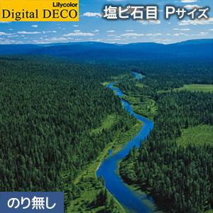 【壁紙】【のり無し壁紙】リリカラ デジタル・デコ 森 PEACE OF FOREST ウラルのタイガ林 塩ビ石目 Pサイズ__d8082wp