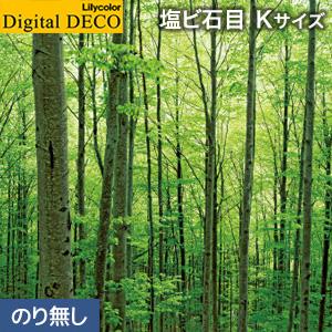 【壁紙】【のり無し壁紙】リリカラ デジタル・デコ 森の惑星 新緑ブナの森 塩ビ石目 Kサイズ__d8083wk