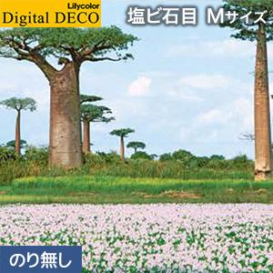 【壁紙】【のり無し壁紙】リリカラ デジタル・デコ 森の惑星 バオバブ街道 塩ビ石目 Mサイズ__d8085wm