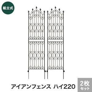 【エクステリア】新アイアンフェンス ハイ220 2枚組 540×14×2200mm__dnf220-2p