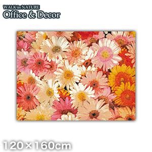 【ラグカーペット】KLEEN-TEX デザインラグ Office & Decor Flower フラワー 120×160cm__ax00013