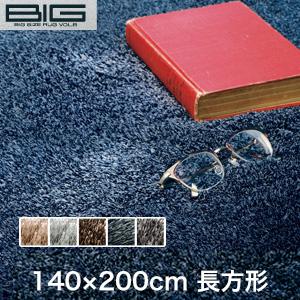 【ラグカーペット】スミノエ BIG ネオグラス 140×200cm*NGL2 NGL9 NGL8 NGL38 NGL10__cp13127373-1-