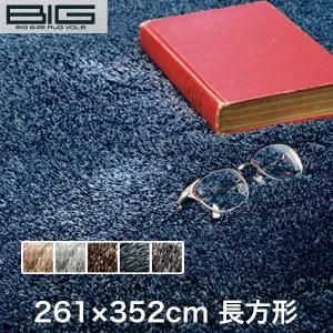 【ラグカーペット】スミノエ BIG ネオグラス 261×352cm*NGL2 NGL9 NGL8 NGL38 NGL10__cp13127373-5-