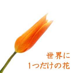 世界に1つだけのオーダーメイドの花■古希祝、喜寿祝、金婚式、展覧会など特別な日に贈るフラワーギフト【生花・和風フラワーアレンジメント】画像サービス■花と器・和の花