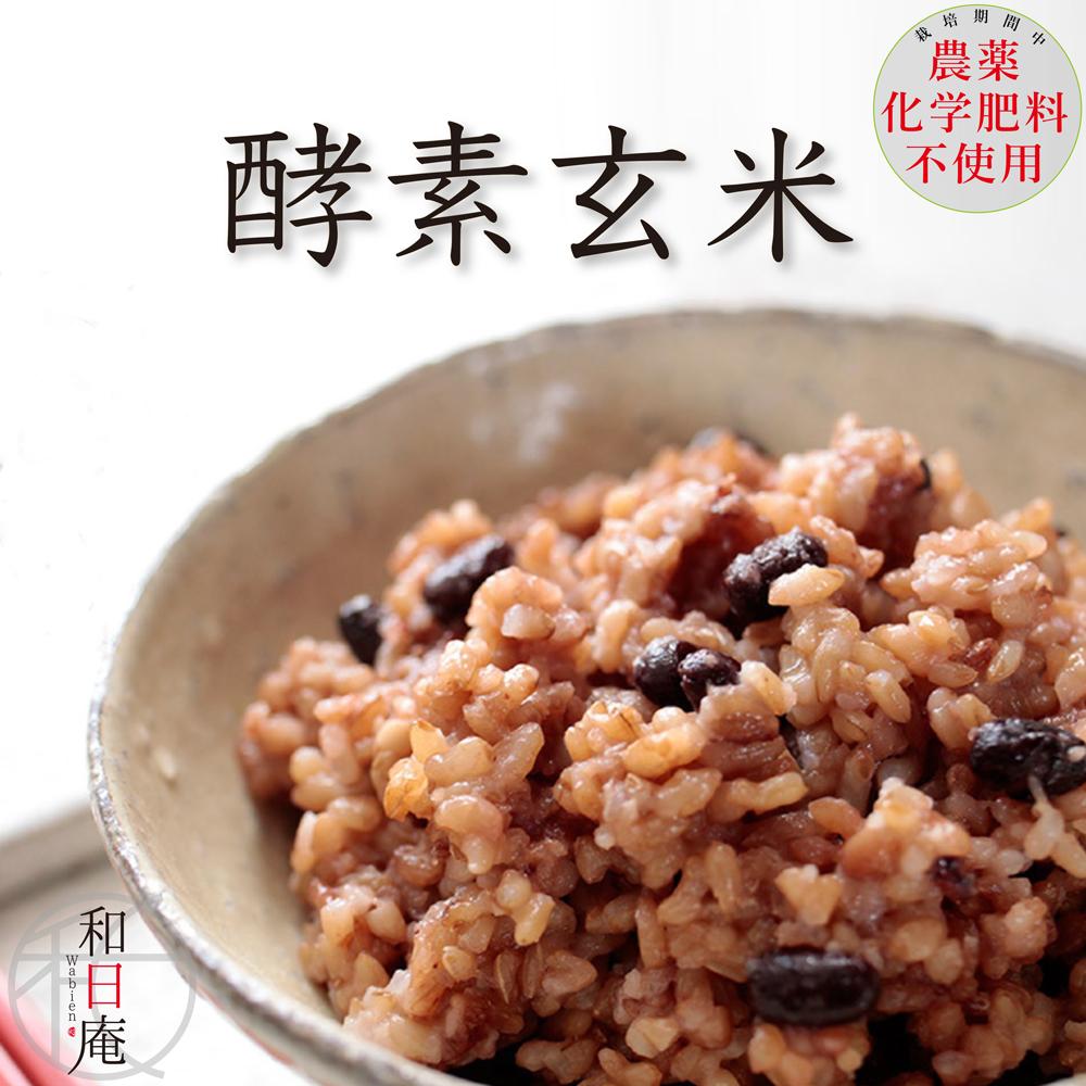 もちもち食感の酵素玄米「もち熟玄米」  【送料無料】 酵素玄米 冷凍 130g 20個入りもっちり熟成 栽培期間中農薬・化学肥料不使用 残留農薬ゼロ 発酵玄米