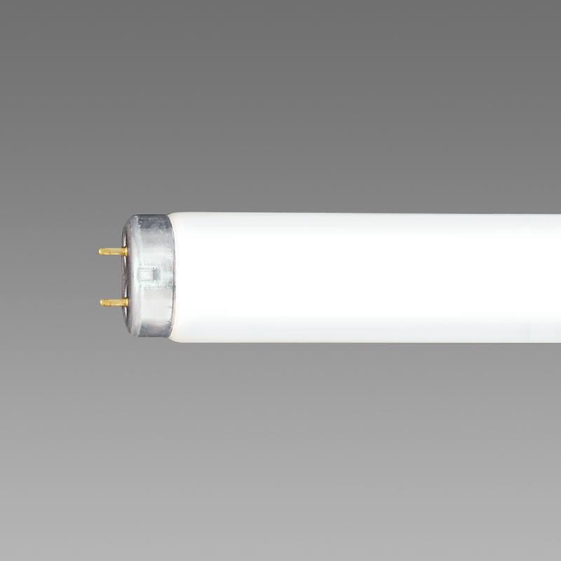 ◎NEC 紫外放射カット・飛散防止形蛍光ランプ 直管ラピッドスタート形 40形 3波長形昼白色 【25本入り】 FLR40SEX-N/MP/NU