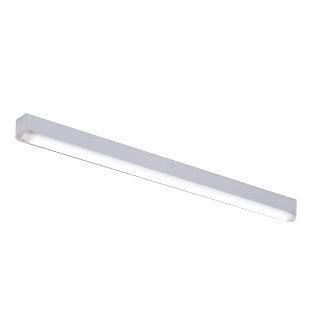 TENQOOシリーズ 送料無料 ※一部地域を除く 東芝 LEDベースライト 防湿 防雨形 ステンレス 選択 耐塩形 LEKTW407524SN-LS9 昼白色 LEET40704WS+LEEM40524NWPLS9 W70 一般5,200lmタイプ 40タイプ 直付形 LEDバー付 高級な Hf32形×2灯用定格出力形器具相当