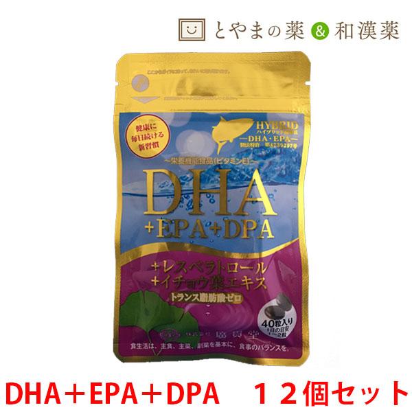 【 送料無料 】広貫堂 DHA EPA DPA レスベラトロール 12個セット | イチョウ葉エキス イチョウ葉 トランス脂肪酸ゼロ 青魚マグロ まぐろ サプリ サプリメント 魚不足 オメガ3 ドコサヘキサエン酸 ビタミンe タブレット 健康食品 栄養補助食品 健康サプリ フィッシュオイル